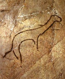 Cueva de Niaux. Francia - réseau CLASTRES