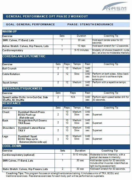 Personal Trainer Workout Plan Template New General Performance Workout Fitness Personalized Workout Plan Personal Fitness Trainer Workout Template