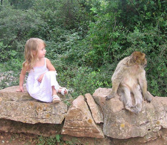 """""""La Forêt des Singes - Monkey Forest"""" in Rocamadour, France"""