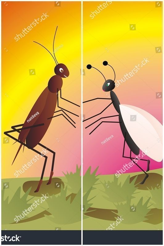 Art Illustrationart Ant And Cricket In Love Cartoon Character Useful For Kids Books Vector Queen Ant Vector Illustration Graphic Design Illustration