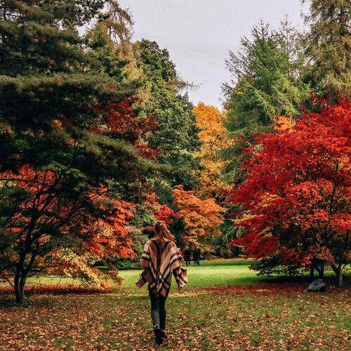 girl running through autumn colours at westonbirt arboretum