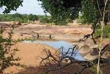 River in Kruger National Park, South Africa.