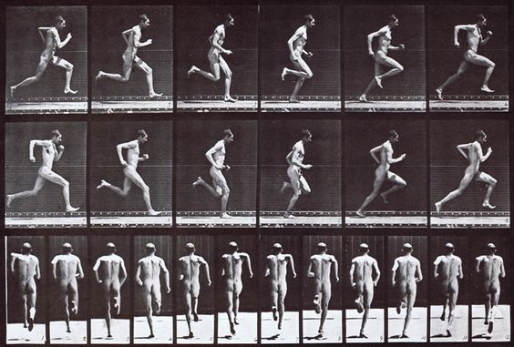 Profile and rear views of nude male looping runcycle at full speed animation reference using muybridge plate 62 from animal locomotion