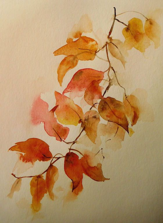 Feuille De Platane Automne Aquarelle 25 X 25 Cm Autumn Maple