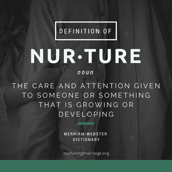 the relation of nurture in the process of development One of the oldest arguments in the history of psychology is the nature vs nurture debate each of these sides have good points that it's really hard to decide whether a person's development is predisposed in his dna, or a majority of it is influenced by this life experiences and his environment.