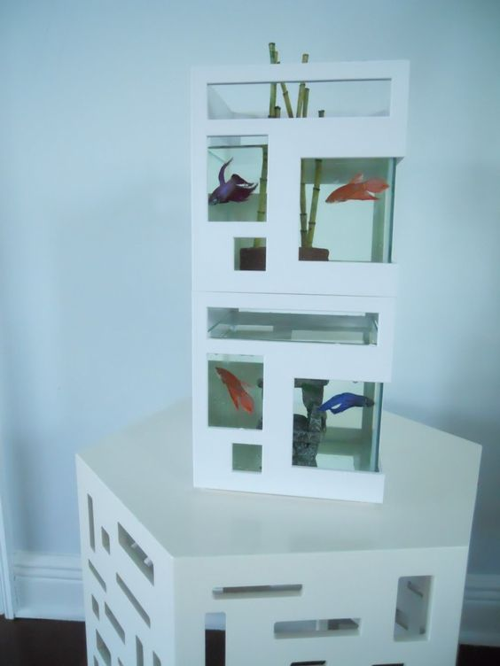 This fish hotel aquarium will certainly give your betta, swordtails or  platies a modern home