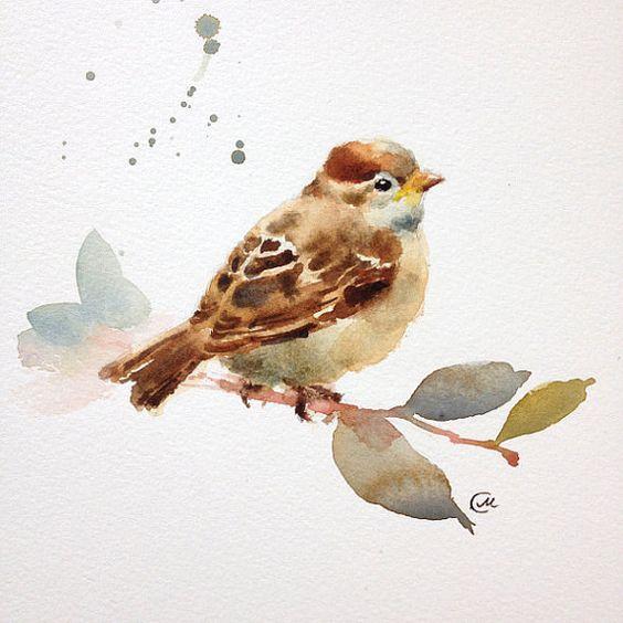 Bébé Moineau oiseau aquarelle
