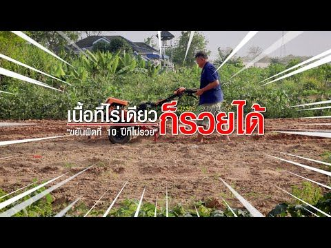เน อท ไร เด ยว ก รวยได เกษตรอารมณ ด Youtube ในป 2021 เล าไก