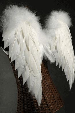 Feather Wings 27 x 20 White Feathers with Marabou (Save 24%)