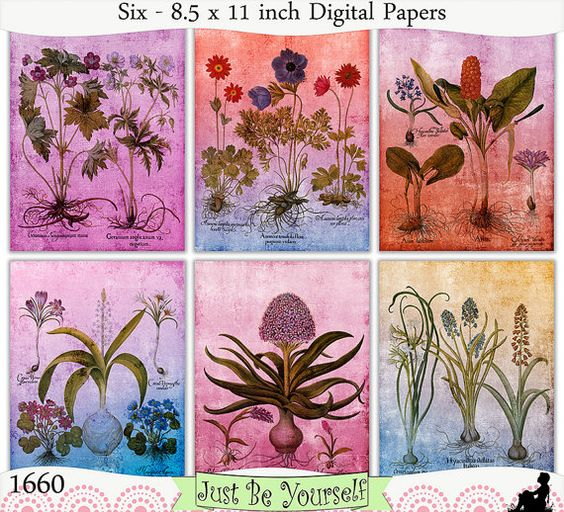 Instant Download Shabby Vintage Botanicals Set 2 by JustBYourself, $3.00 (1660)