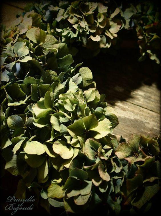 Couronne d'hortensias... Prunelle et Bigoudi