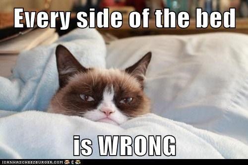 c6a9b7620b066106f63bedf5ca98e4db no sleep again fibromyalgia pinterest no sleep and sleep,Chronic Illness Cat Meme