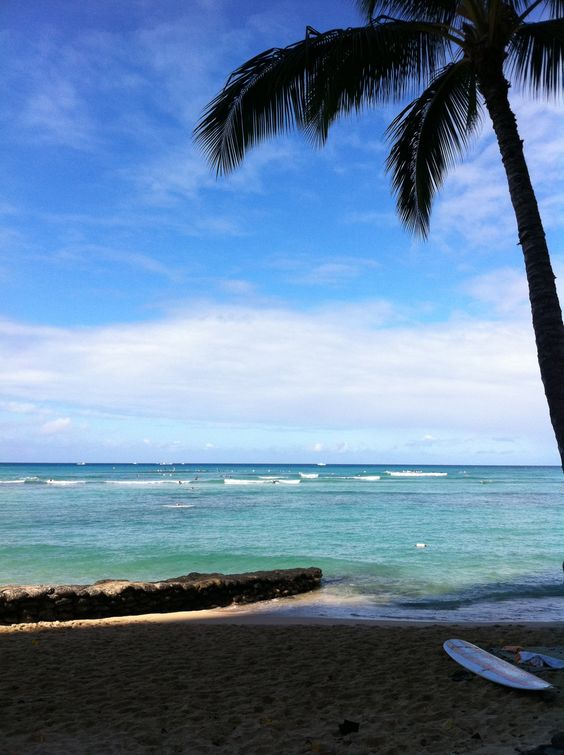 Might just have to take a break and catch a few waves. #surf #hawaii #gohawaii #travel