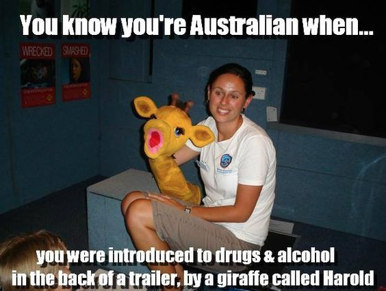 On education:   29 Of The Best Australian Memes On The Internet