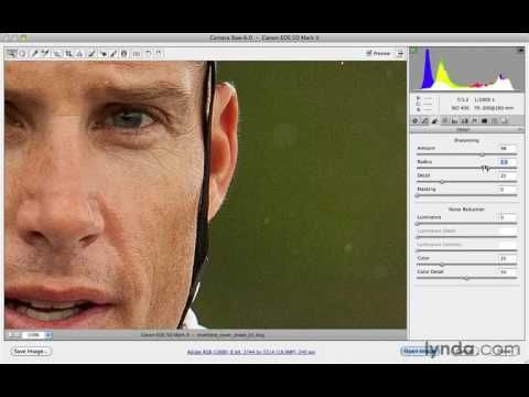 Camera Raw 8 For Photographer Tutorial 15 Sharpening And Noise Reduction Photoshop Help Photoshop Cs5 Tutorials Camera Raw