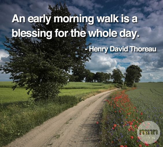 Early Morning Blessing Quotes: Pinterest • The World's Catalog Of Ideas