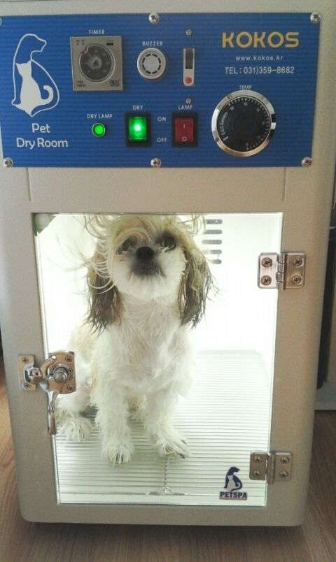 Easy To Dry Your Pet You Don T Have To Struggle With It Now It S Available In Canada Pet Dry Room Petdryer Petdry Pet Easy Dry Drying Room Pets Your Pet