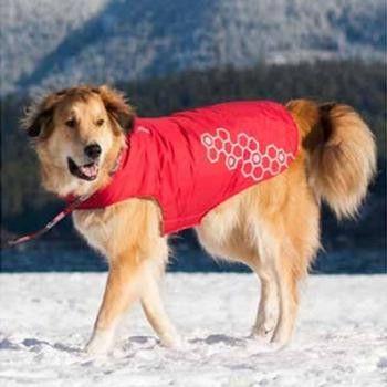 Venture Outerwear Dog Coat - Crimson