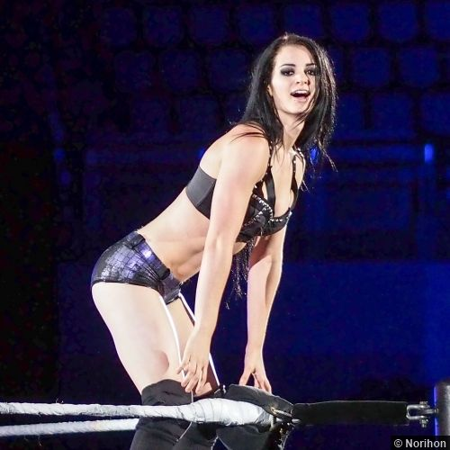 wwe_diva_paige_hot-pictures-06.jpg (500×500)
