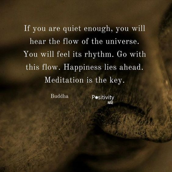 If you are quiet enough you will hear the flow of the universe. You will feel its rhythm. Go with this flow. Happiness lies ahead. Meditation is the key. #Buddha #positivitynote #upliftingyourspirit