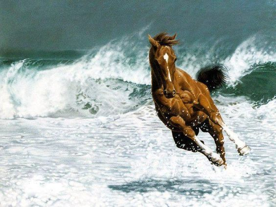 ): Beautiful Horses, The Wave, Horses 3, Beautiful Animals, On The Beach, Oil Painting, Wild Horses
