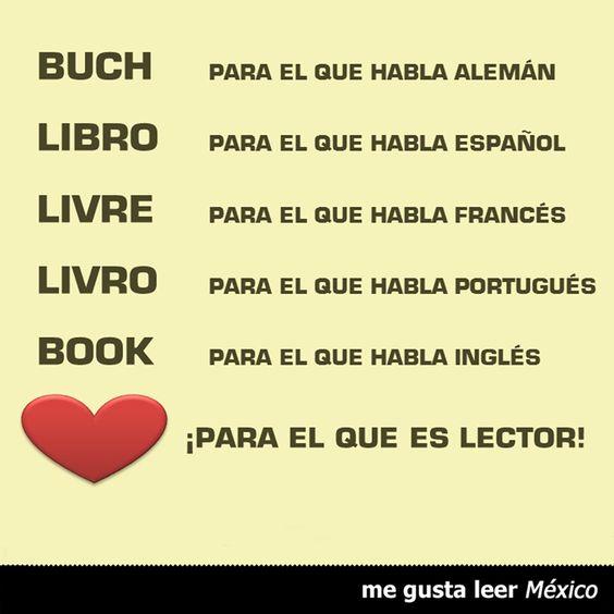 Libro livre livro book