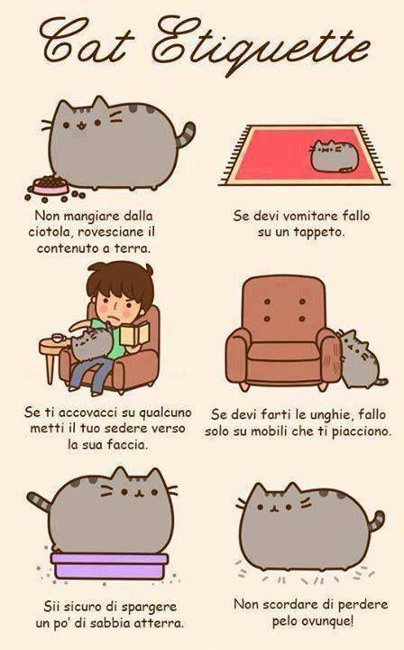 Il codice di buon #comportamento del #gatto #cat #etiquette #catiquette