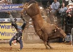 Pbr Bull Riding Wrecks Bing Images Bull Riding