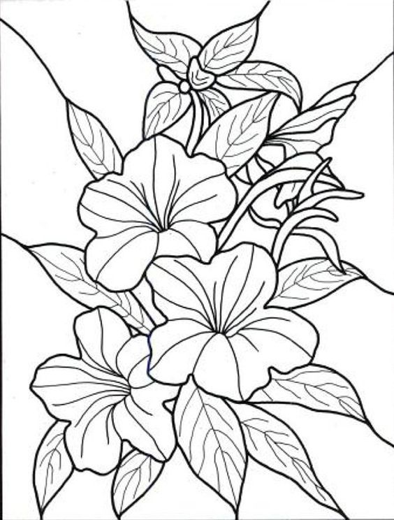 tropical flowers stained glass coloring book hand drawn rh pinterest com art adult coloring pages printable - Adult Coloring Pages Flowers