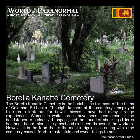 Sri lanka paranormal and events on pinterest for Paranormal activities in the world
