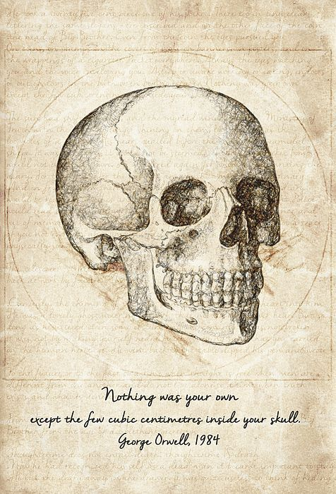 Skull Quote By George Orwell By Zapista Ou In 2020 Skull Quote Anatomy Art George Orwell