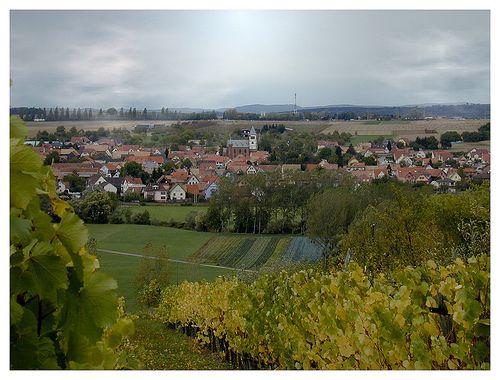 Schwindratzheim, Bas-Rhin. Pop: 1585