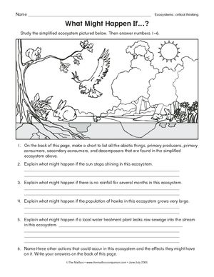 Printables Ecology Worksheets For High School worksheets google and organizations on pinterest ecology levels of organization worksheet search