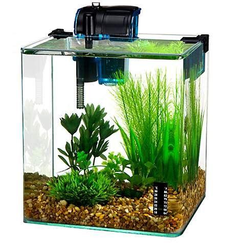 Penn Plax 2 7 Gallon Vertex Desktop Aquarium Kit 2 7 Gallons Petco Aquarium Kit Desktop Aquarium Betta Fish Tank