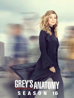Baixar Grey S Anatomy 16ª Temporada Mp4 Legendado Greys Anatomy