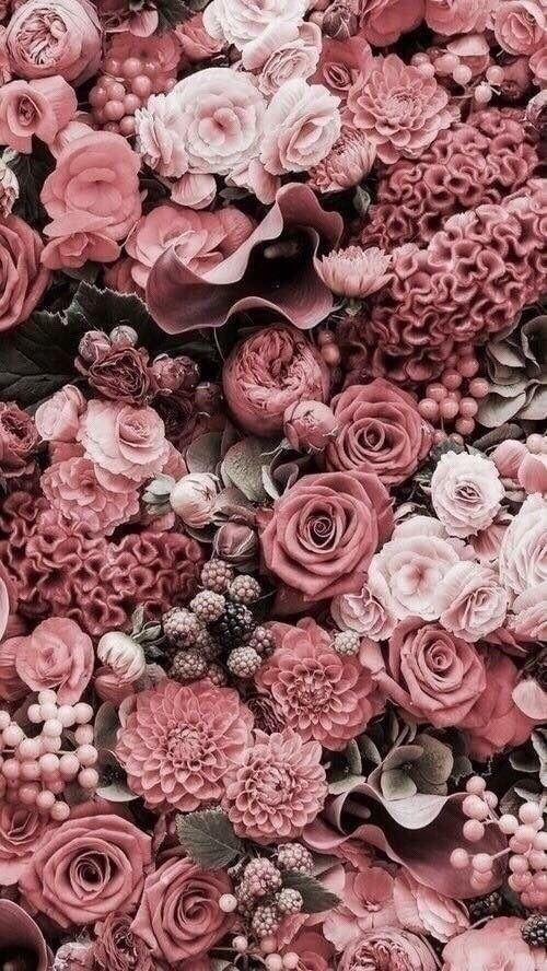 Pinterest Juliaahn Flower Phone Wallpaper Trendy Flowers Flower Aesthetic