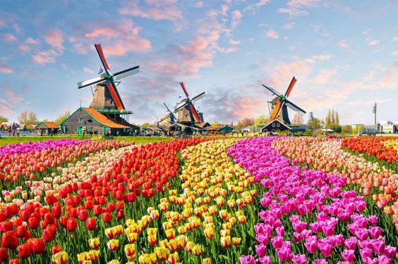 Keukenhof, Lisse, The Netherlands