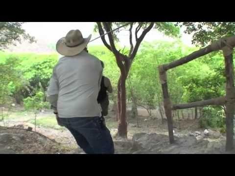 The baths and hot springs at Las Grutas Tolantongo, Hidalgo, Mexico - YouTube