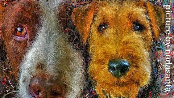 PCペイントで絵を描きました! Art picture by Seizi.N:           #イラスト #dog #YouTube 仲良しのワンちゃん達をデカ顔でお絵描きし...