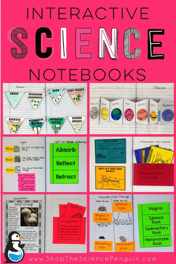 Be ready for Back to School!  Interactive Science Notebooks from The Science Penguin