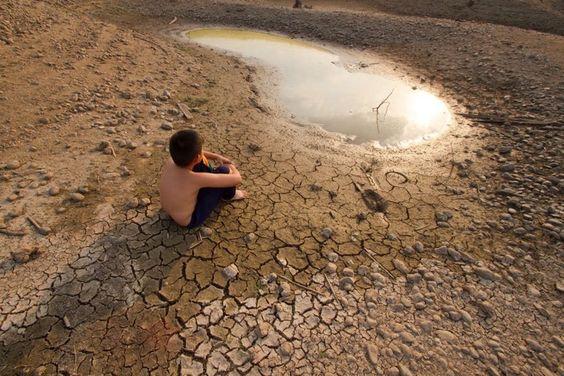 Por el impacto medioambiental la Tierra ha entrado a un nuevo periodo geológico y es preocupante