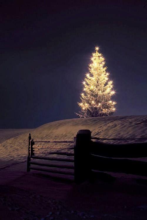 Peace and Love - Favorite Photoz For nå gleder jeg meg ikke til julestemning i det heeeeele tatt!: