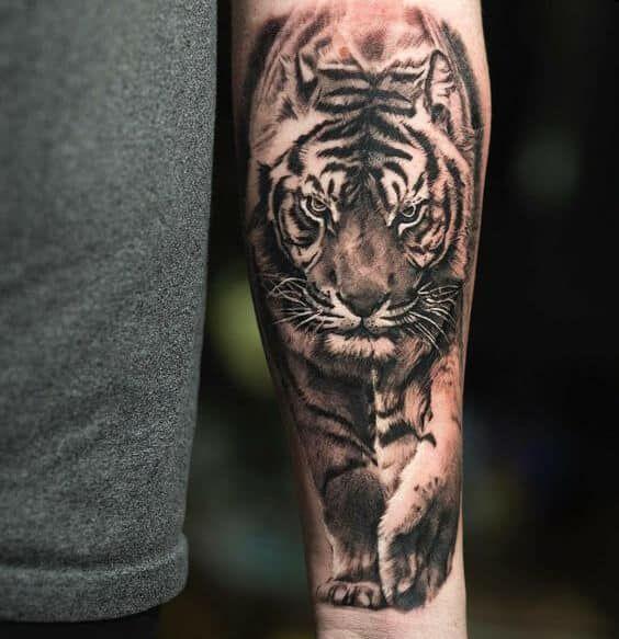 Tiger Tattoos For Men Mens Tiger Tattoo Tiger Tattoo Design Animal Tattoos For Men