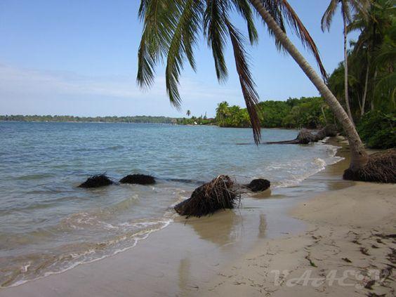 Playa de Las Estrellas - Isla Colón
