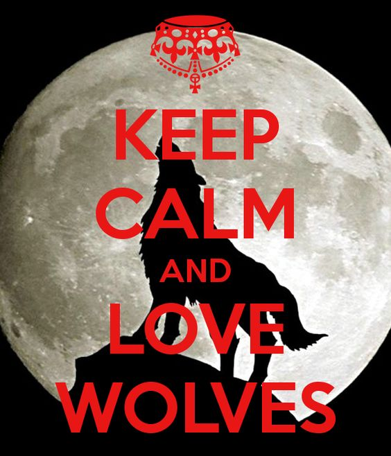 KEEP CALM AND LOVE WOLVES - KEEP CALM AND CARRY ON Image Generator - brought to you by the Ministry of Information