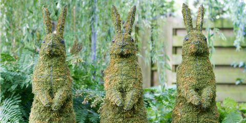 It's Not Easy Being Green: The Most Elaborate Hedges and Topiaries