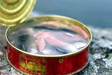 【禁断の缶詰】シュールストレミングの匂いと味に迫る。