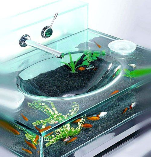 Top 10 Unusual Aquariums