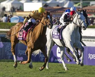 Steven Crist: There's one Eclipse Award where Wise Dan is not best choice