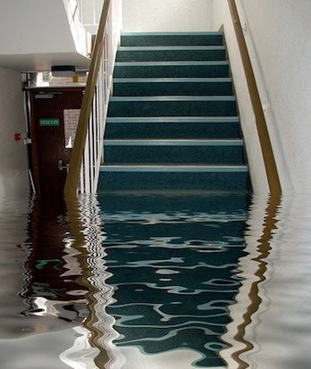 The when, why, and how to buying a sump pump water damage basement